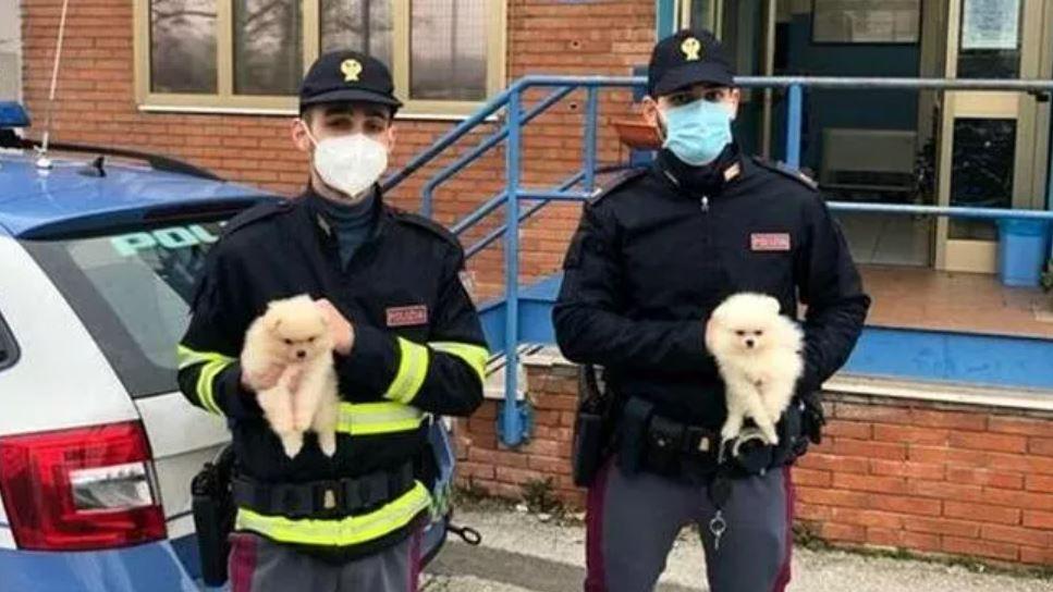 poliziotti-con-cani