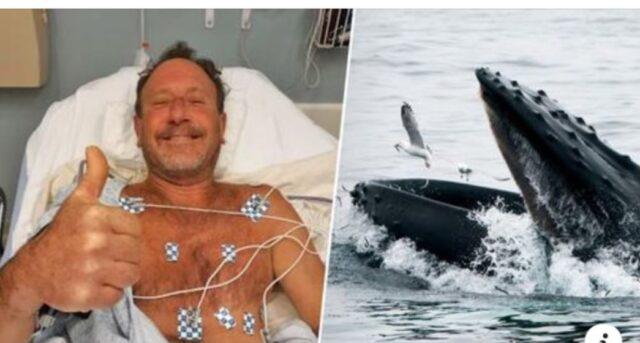 pescatore-salvo-balena