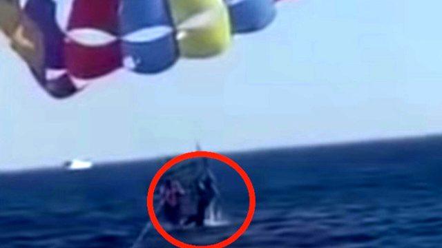 aqaba-squalo-paracadute-mar-rosso-giordania